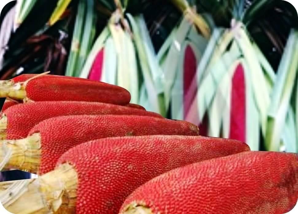 Красный фрукт